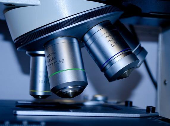 Firemní výzkum roste, jeho služby loni vykázaly rekordní miliardu korun